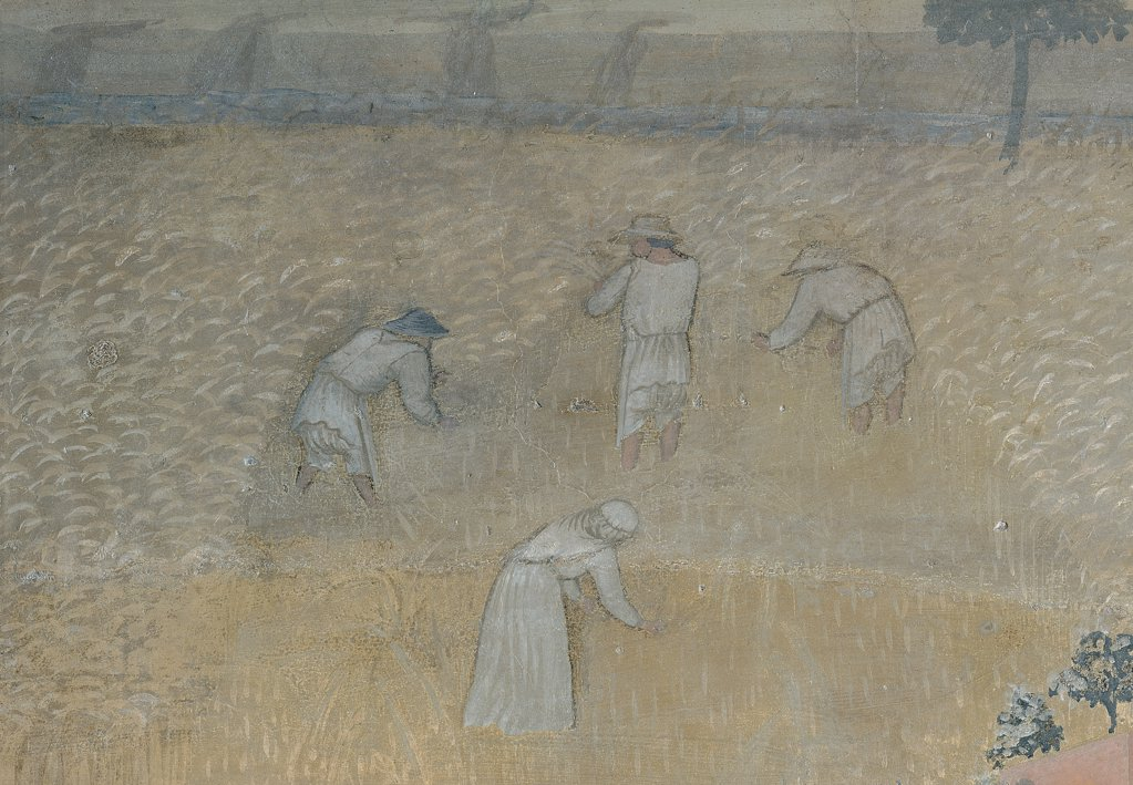 The Effects of Good Government in the Country, by Lorenzetti Ambrogio, 1338 - 1340, 14th Century, fresco. Italy, Tuscany, Siena, Palazzo Pubblico, Sala della Pace, eastern wall. Detail. Farmers reaping field work. : Stock Photo