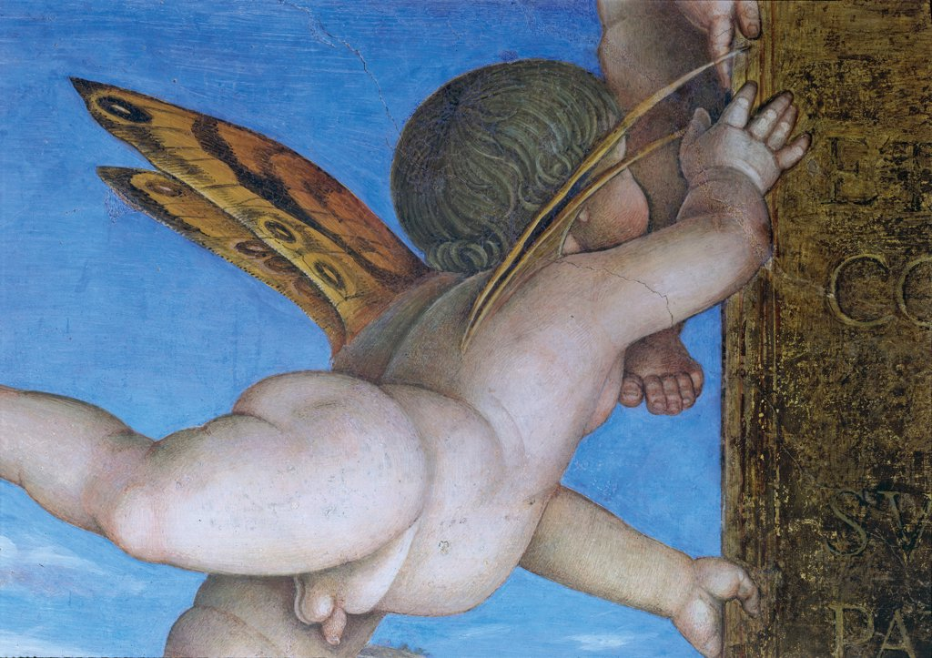 "Decoration of the Camera degli Sposi (Camera Picta), by Mantegna Andrea, 1465 - 1474, 15th Century, fresco and """"dry"""" tempera. Italy, Lombardy, Mantua, Ducal Palace. Detail. Putto: cherub holding a plate with butterfly wings. Western wall The meeting between Ludovico Gonzaga and his sons Federico and Francesco. Central episode: scene.. : Stock Photo"