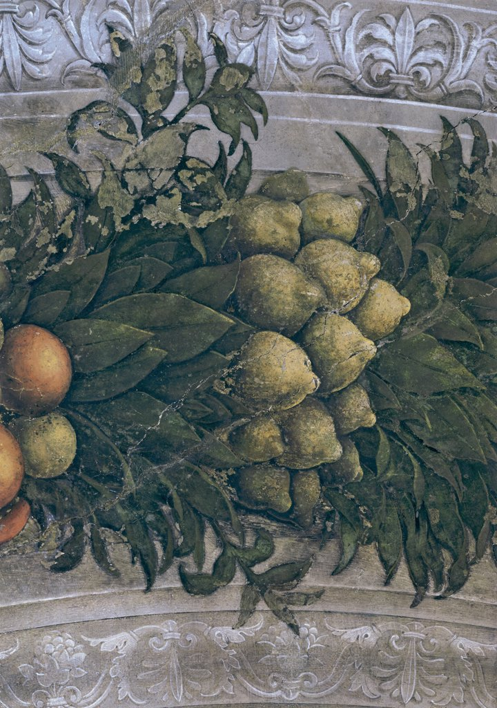 "Stock Photo: 1899-31365 Decoration of the Camera degli Sposi (Camera Picta), by Mantegna Andrea, 1465 - 1474, 15th Century, fresco and """"dry"""" tempera. Italy, Lombardy, Mantua, Ducal Palace. Detail. Garland, leaves, fruits, lemons, decoration festoon lemons."