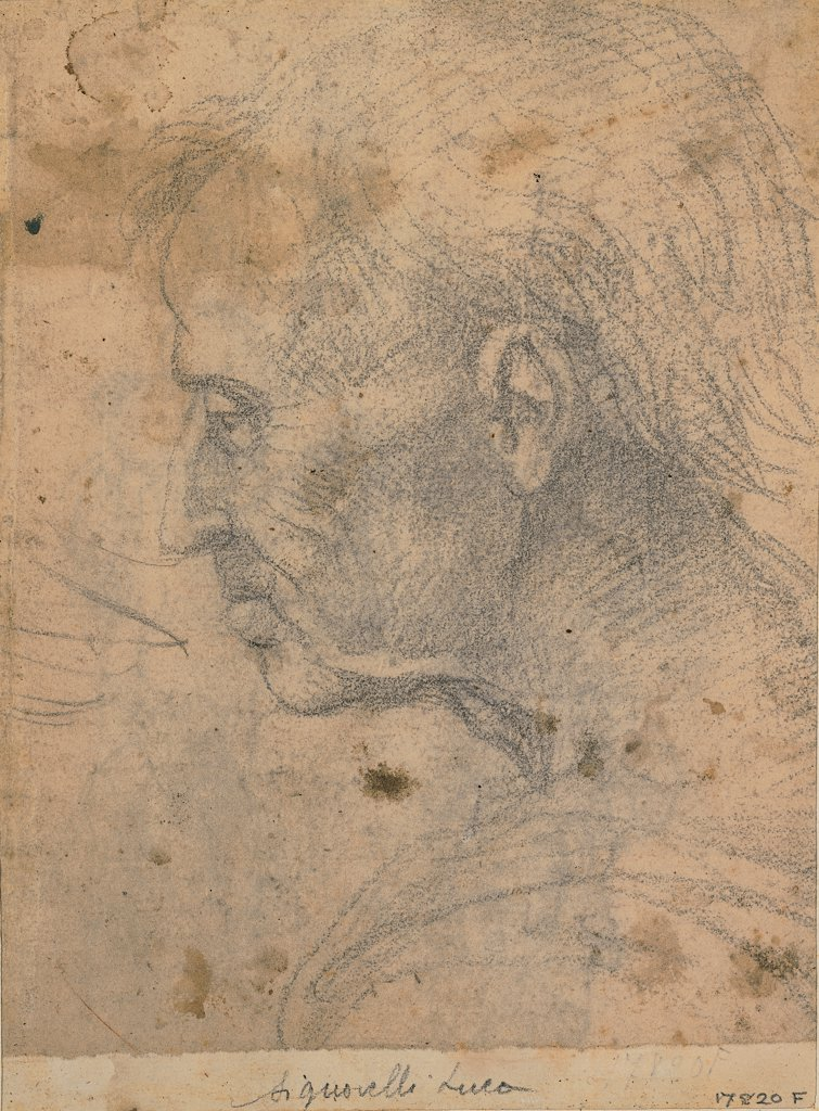 Male profile, by Signorelli Luca, 16th Century, black pencil. Italy, Tuscany, Florence, Uffizi Gallery, Drawings and Prints Cabinet. Whole artwork. Face of an aged man by profile hair receding hair-line wide: broad: high forehead aquiline nose neck shoulder. : Stock Photo