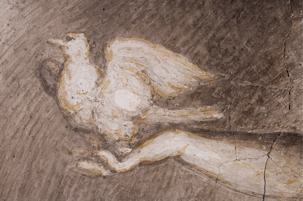 Frescoes in the Camera della Badessa at the Convent of St Paolo in Parma, by Allegri Antonio known as Correggio, 1519, 16th Century, fresco. Italy, Emilia Romagna, Parma, Monastery of San Paolo, Camera della Badessa. Detail. Monochrome lunette bird dove hand. : Stock Photo