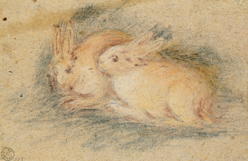 Two Rabbits, by Da Ponte Jacopo know as Bassano, 1570 - 1575, 16th Century, gessetto nero, gessetti colorati marrone, viola, rosa, ocra co. Italy, Tuscany, Florence, Uffizi Gallery, Drawings and Prints Cabinet. Whole artwork. Rabbits drawing brown violet pink ocher. : Stock Photo