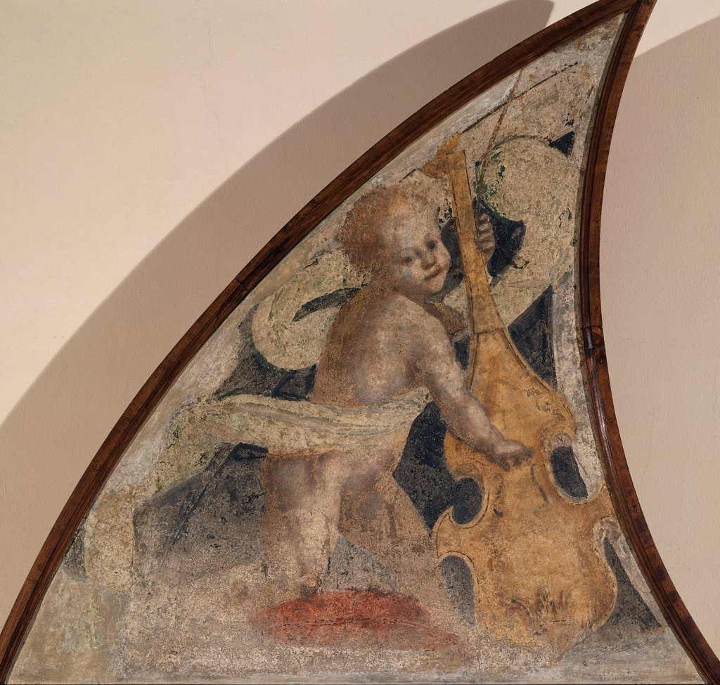 Stock Photo: 1899-33480 Angel with Viola, by Ferrari Gaudenzio, 1539 - 1539, 16th Century, fresco transferred to canvas, wooden frame. Italy, Lombardy, Milan, Brera Art Gallery. Semi-lunette little angel musician drape: cloth music instrument viola.