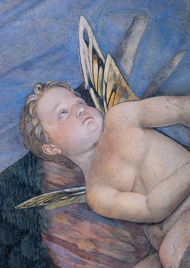 Decoration of the Camera degli Sposi (Camera Picta), by Mantegna Andrea, 1465 - 1474, 15th Century, fresco and dry tempera. Italy. Lombardy. Mantua. Ducal Palace. West wall The meeting between Ludovico Gonzaga and his sons Francesco and Federico. Central episode. Detail of putto with butterfly wings light blue/azure : Stock Photo