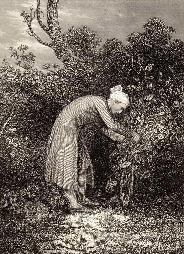 "William Cowper, 1731-1800 """"Cowper in his garden"""". Enlgish poet. 19th century print from an original drawing by G.H. Smith. : Stock Photo"