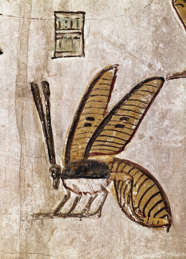 Stock Photo: 1899-42046 Bee, detail. From the Tomb of Seti I. Mural painting, 19th Dynasty. Valley of the Kings on the West Bank at Luxor, Egypt.