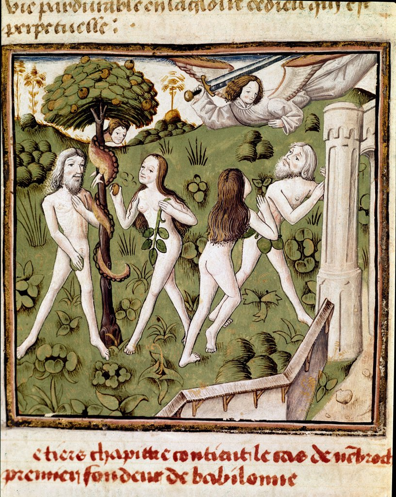 Stock Photo: 1899-43295 Adam and Eve Picking the Forbidden Fruit. Miniature from De Casibus Virorum Illustrium (On the Fates of Famous Men), by Giovanni Boccaccio (1313-1375). 15th century. Bibliotheque Inguimbertine, Carpentras, France.