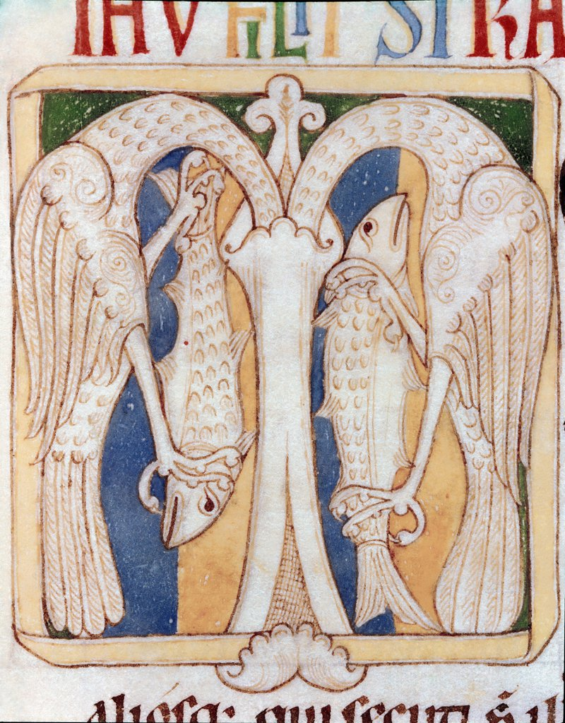 Ornate Letter M depicting Herons and Fish. Miniature from the Testamentum Vetus (Old Testament), Santa Cruz de Coimbra. 12th century. Municipal Library, Porto, Portugal .  : Stock Photo