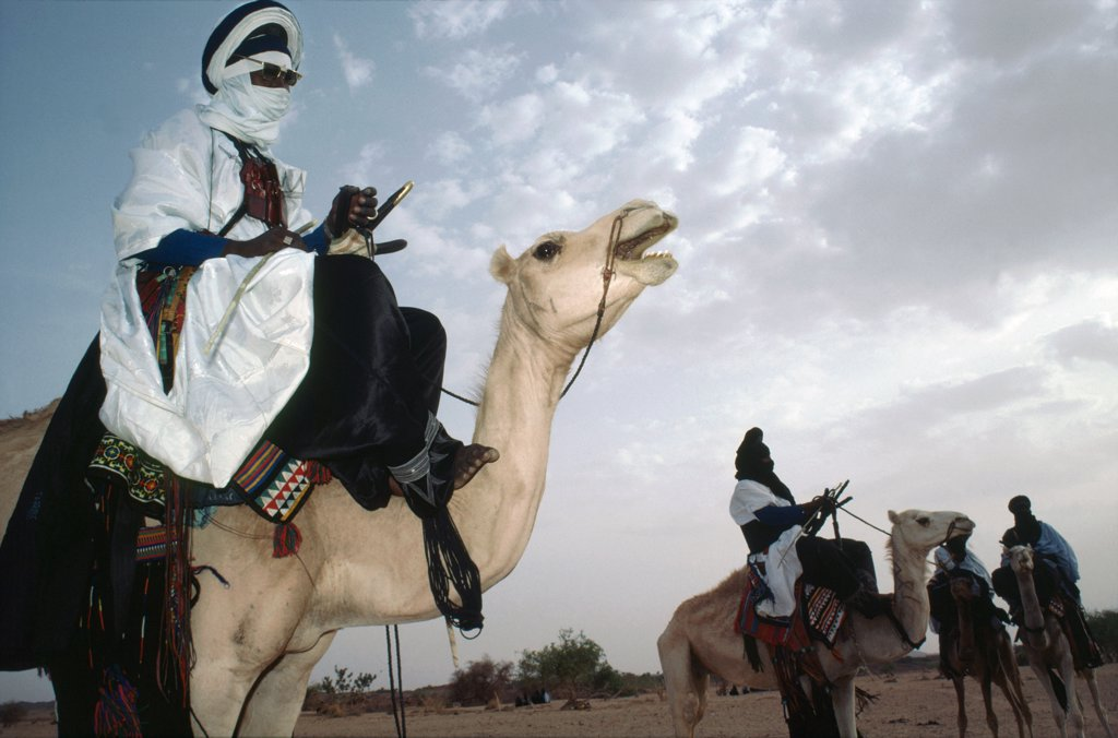 Stock Photo: 1899-43798 TUAREG NOMADS, NIGER (West Africa). This nomadic tribe still make a living as traders. .