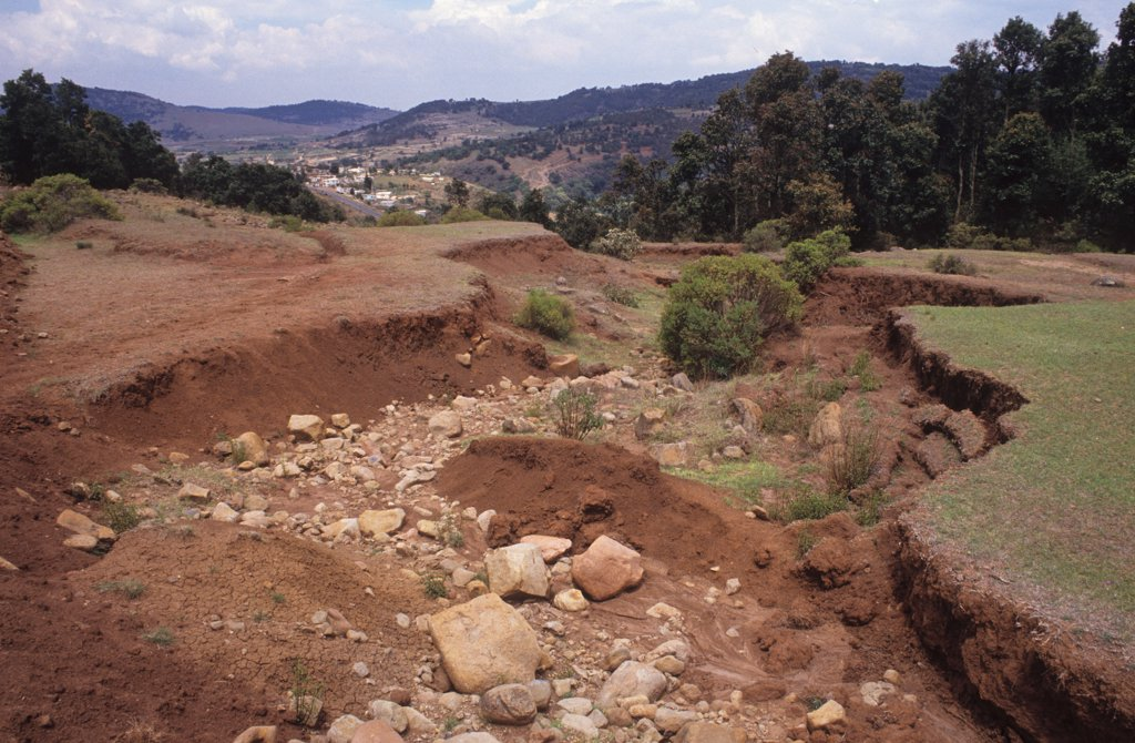 Stock Photo: 1899-43899 SOIL EROSION, MEXICO. El Jasmin - 100km from Meico City. . Trees are cut down to enlarge farms and the land erodes. Peasants are forced off the land and migrate to nearby cities.