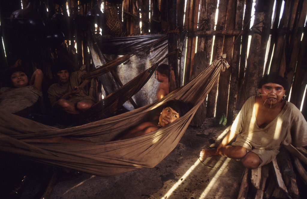Stock Photo: 1899-43954 YANOMAMI AMERINDIANS, VENEZUELAN AMAZONAS. Serra Parima, Orinoco River Basin. Yanomami village. Families live in large communal homesteads. . Each family has its own hearth where members eat, sleep and store belongings. Hammocks are strung one above the other like bunks with the youngest children at the bottom. Of all Amerindian tribes, the Yanomami have the least exposure to the modern world. Their future may now be threatened by diseases spread by illegal gold miners.