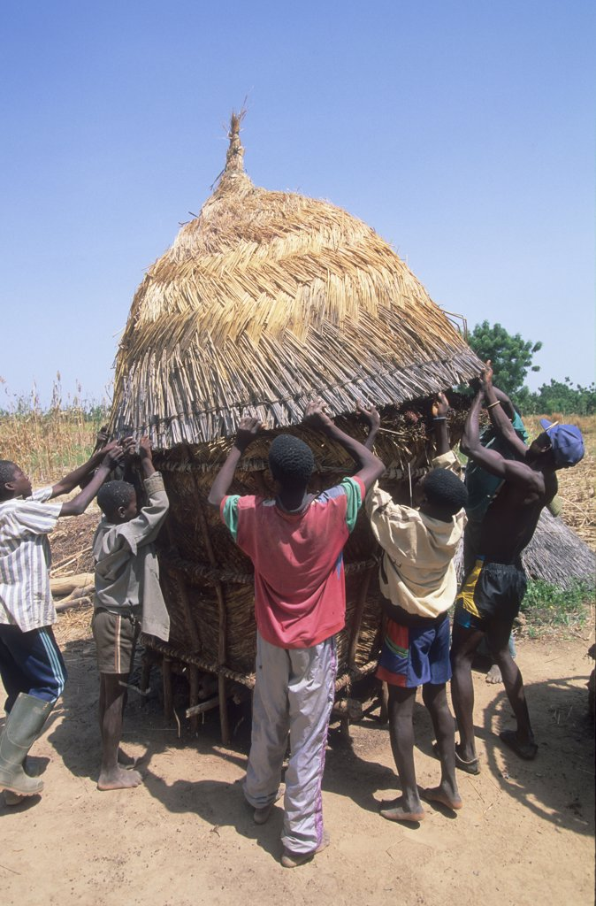 AGRICULTURE, BURKINA FASO. Silmiougou Village. Maize, sorghum and millet are stored in special huts in the village. Grain storage. .  : Stock Photo