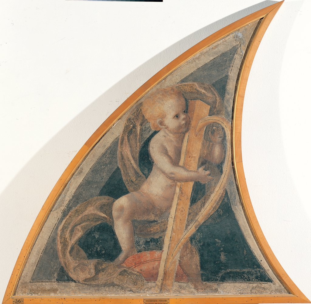 Stock Photo: 1899-44810 Angel with Harp, by Ferrari Gaudenzio, 1539 - 1539, 16th Century, fresco transferred to canvas, wooden frame. Italy: Lombardy: Milan: Brera Art Gallery: gia nella Cappella della Nativita della Vergine in Santa Maria della Pace a Milano. Whole artwork. Half-lunette on left angel scroll harp