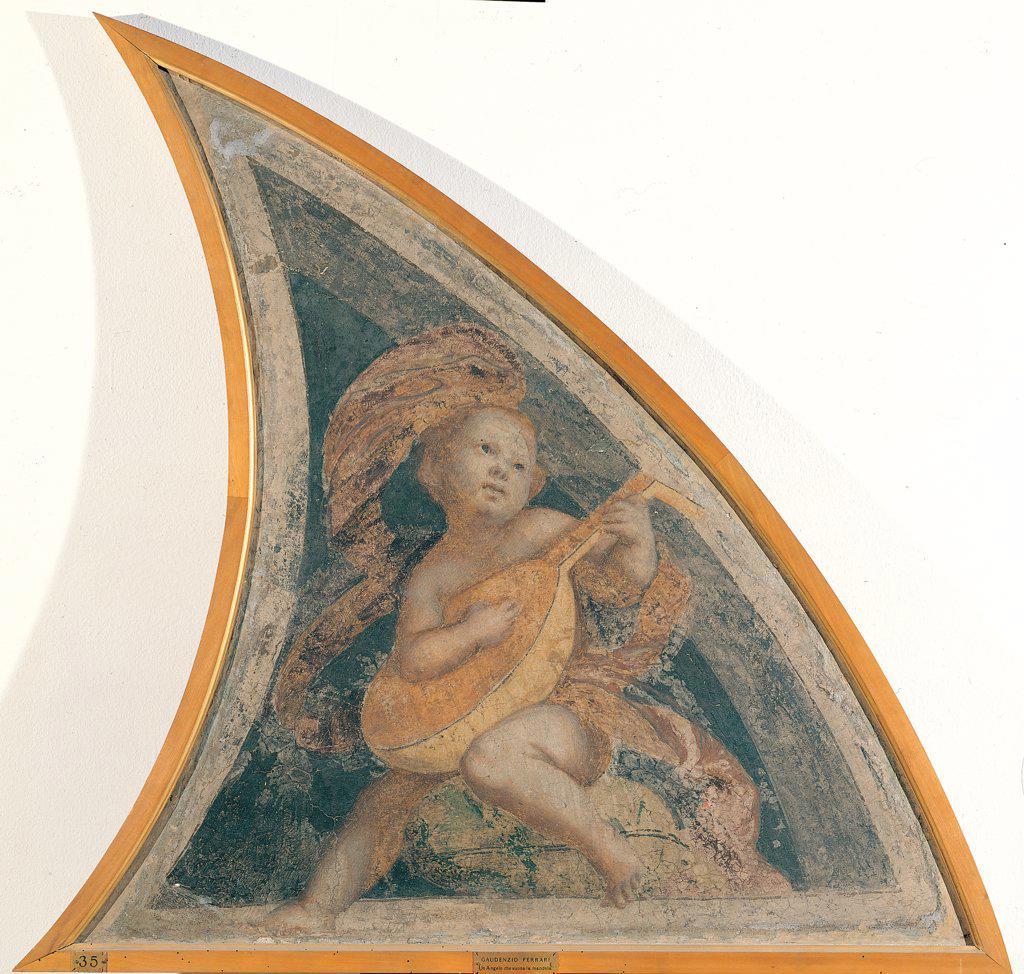 Angel with Mandola, by Ferrari Gaudenzio, 1539 - 1539, 16th Century, fresco transferred to canvas, wooden frame. Italy: Lombardy: Milan: Brera Art Gallery: gia nella Cappella della Nativita della Vergine in Santa Maria della Pace a Milano. Whole artwork. Half-lunette on the right angel mandola : Stock Photo