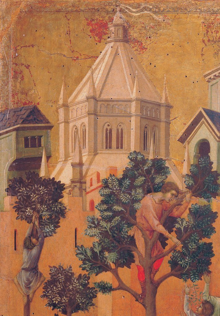 The Maesta, front, by Duccio di Buoninsegna, 1308 - 1311, 14th Century, tempera on panel. Italy: Tuscany: Siena: Cathedral. Verso, lower fascia, first panel. Entry into Jerusalem, detail. Two men, climbed trees, plucking branches. The city rising in the gold background : Stock Photo