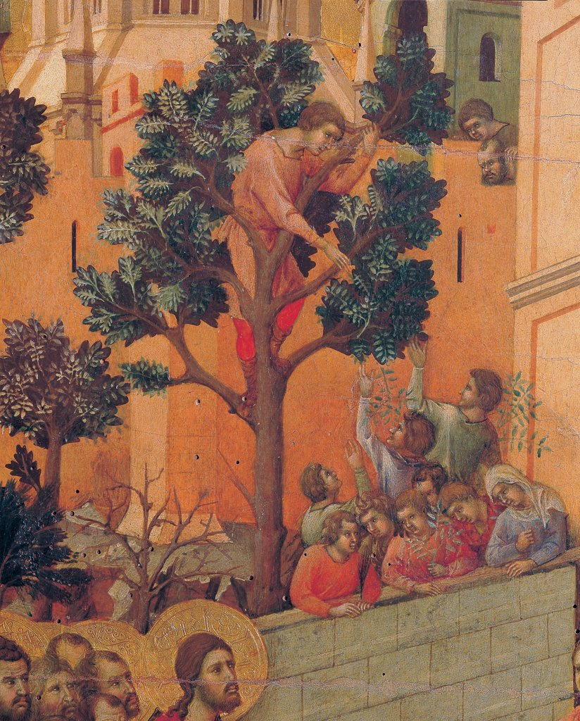 The Maesta, front, by Duccio di Buoninsegna, 1308 - 1311, 14th Century, tempera on panel. Italy. Tuscany. Siena. Cathedral. Verso, lower fascia, first panel. Entry into Jerusalem, detail. Two men, climbed trees, plucking branches. In the background of the city, in the foreground at the bottom of faces of Christ and some apostles : Stock Photo