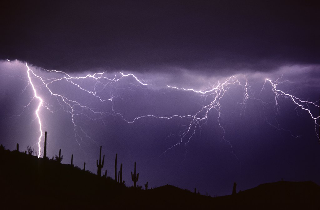 Stock Photo: 1899-49824 Two types of lightning over the Sonoran Desert, a cloud-to-ground discharge with air discharge lightning. Saguaro cacti silhouetted on ridge.   Tucson Mountains, Tucson, Arizona, USA.