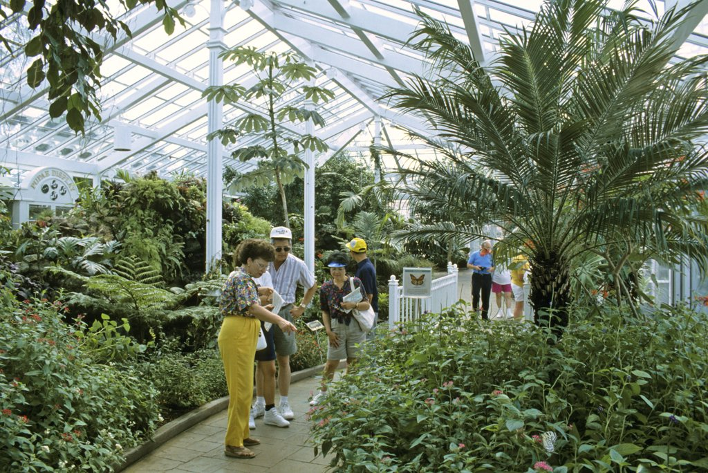 Visitors in the Wings of Wonder butterfly conservatory.   Cypress Gardens, Florida, USA. October 1993. : Stock Photo
