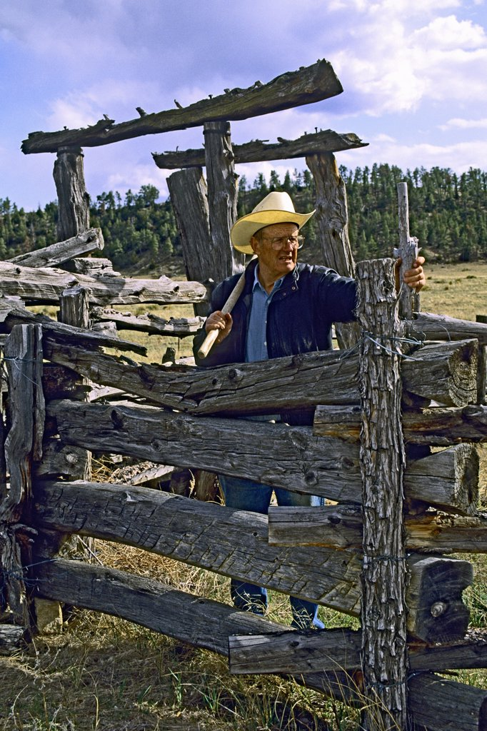 Conservationist, rancher, writer Dayton Hyde (June 1992), pauses while repairing an old corral with split-rail fencing, also known as a log fence.  IRAM, Institute of Range and American Mustang. Black Hills Wild Horse Sanctuary, South Dakota, USA. : Stock Photo