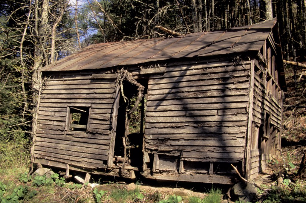 Stock Photo: 1899-50624 Virginia, Rural Backwoods, Dilapidated Log Cabin