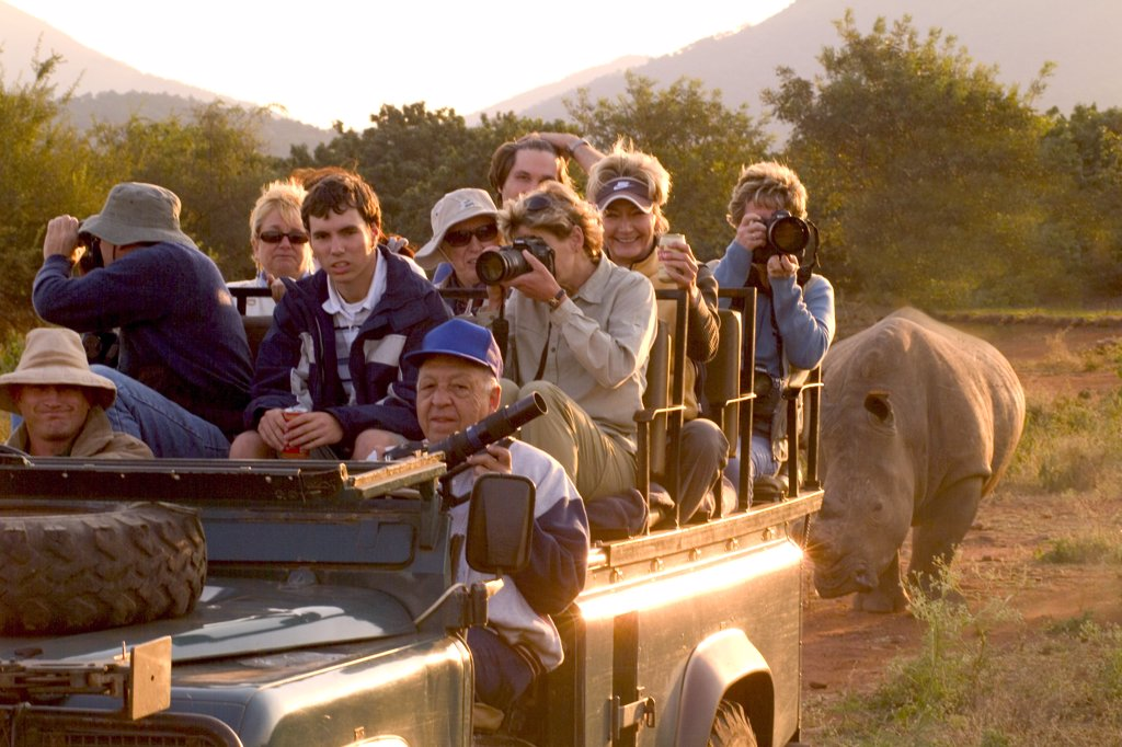Stock Photo: 1899-51800 South Africa, Kruger National Park. Tourists On Safari Spotting A Rare White Rhinoceros