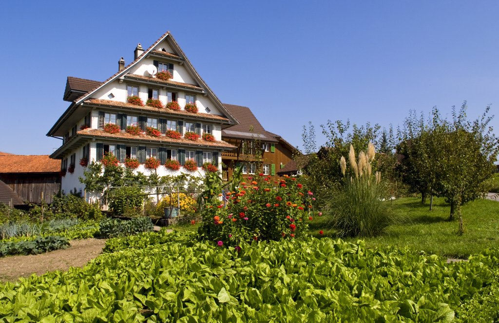 Stock Photo: 1899-52727 Swiss Chalet With Flowers Near Interlaken, Switzerland
