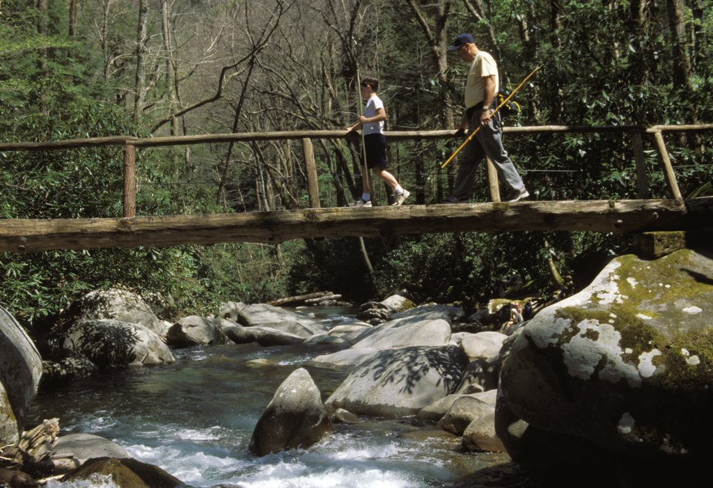 Stock Photo: 1899-53776 Tennessee. Great Smoky Mountains National Park.Foot Bridge Over Porter'S Creek