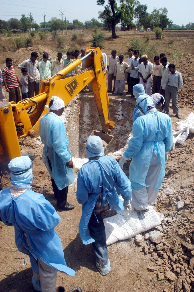 Stock Photo: 1899-54745 Health Workers Fill The Pit With Lime Powder To Bury Infected Chickens Collected In The Backyard Of The Houses As Bird Flu Is Detected At Hingona Village In Jalgaon District, Maharashtra, India
