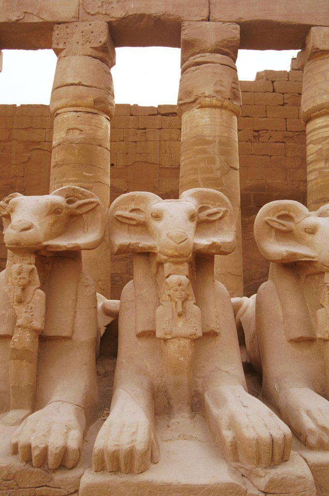 Stock Photo: 1899-57241 Egypt. Luxor. Karnak Temple.