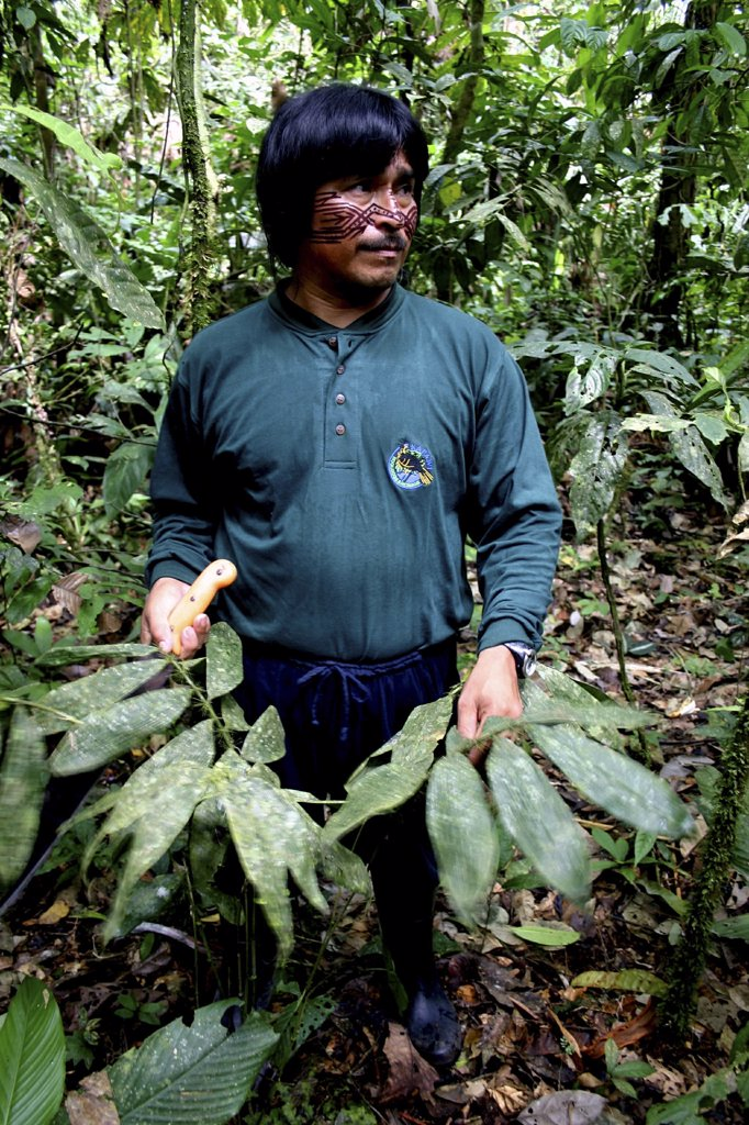Stock Photo: 1899-57477 Ecuador. Achuar Guide At Kapawi Ecolodge
