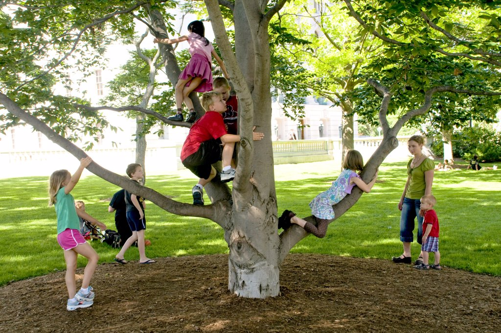 Stock Photo: 1899-59663 Children Climbing Tree