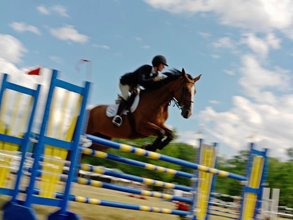 Stock Photo: 1902-1928 Canada Ontario Niagara-on-the-Lake equestrian jumping hurdle