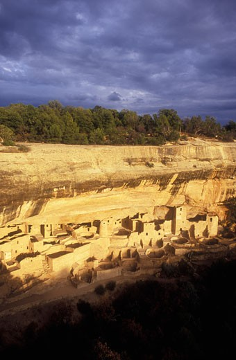 Stock Photo: 1902-2098 USA Colorado Mesa Verde National Park Cliff Palace cliff dwellings of the Anasazi AD 1200