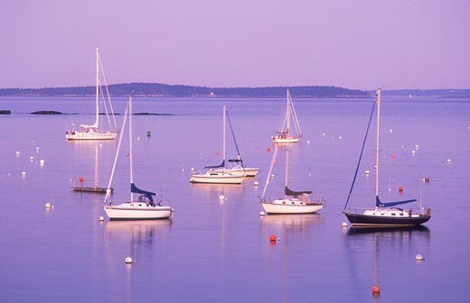 USA Maine Camden Camden Harbour Penobscot Bay sailboats moored in the bay at twilight : Stock Photo