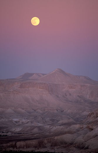 Moonrise over Wadi Zin : Stock Photo