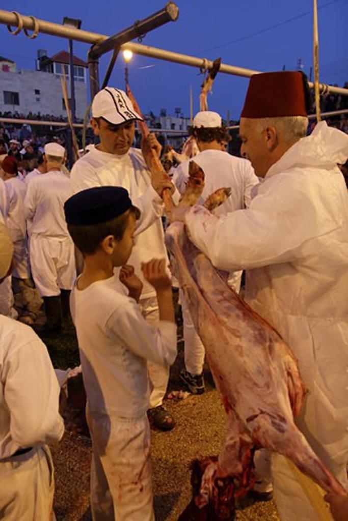 Stock Photo: 1904-2936 The Samaritan Passover sacrifice on Mount Gerizim