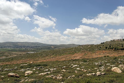 Settlement Shiloh right overlooking Shiloh valley : Stock Photo