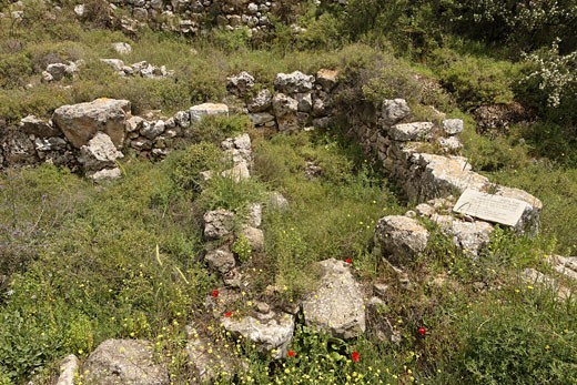 Archeological remnants in Tel Shiloh : Stock Photo