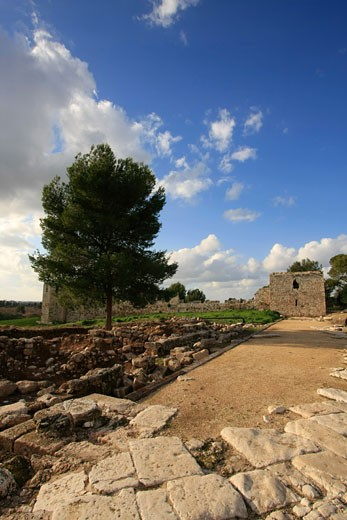 Remains of the Roman city Antipatris built by King Herod : Stock Photo