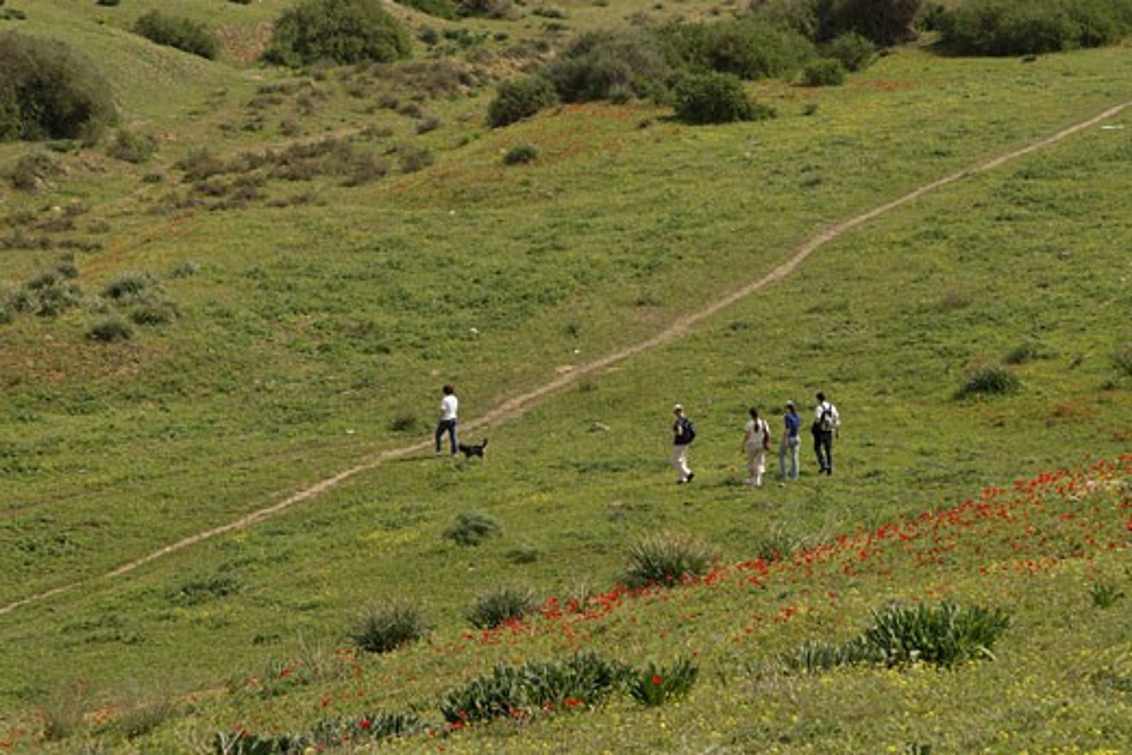 Bitronot Ruhama in Besor region : Stock Photo