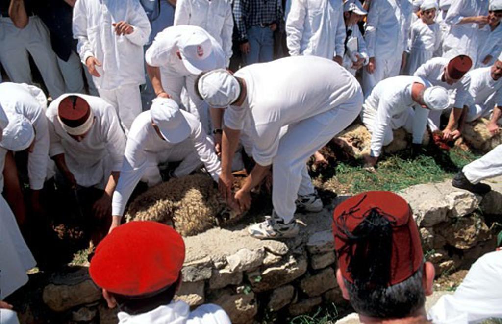 Stock Photo: 1904-6876 Samaria the Samaritan Passover Sacrifice on Mount Gerizim