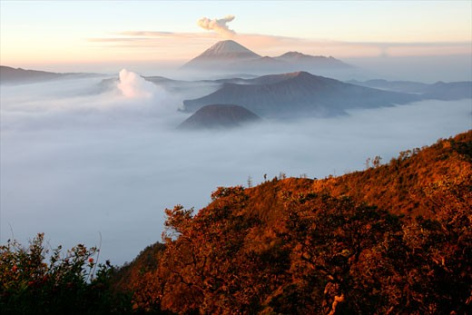Sightseeing at dawn on the Bromo and Semeru vulcanoes in the Tennger caldera Java Indonesia : Stock Photo