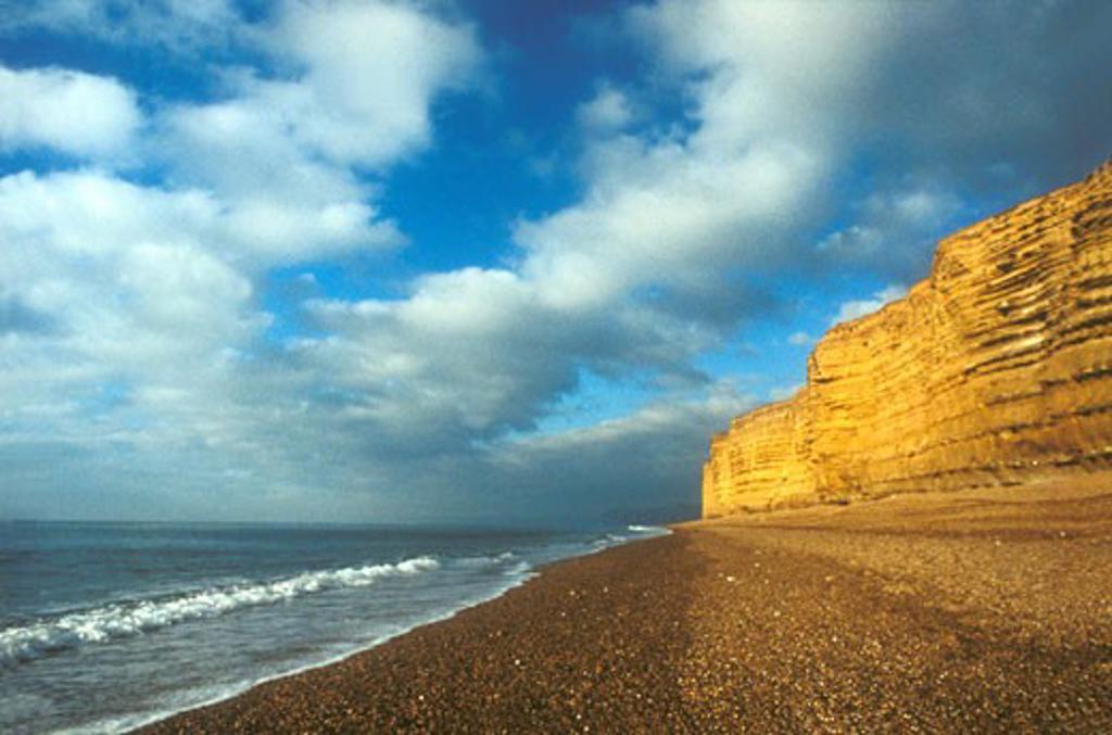 Burton Bradstock Cliffs and beach in winter sun sunshine Dorset England UK United Kingdom GB Great Britain British Isles Europe EU : Stock Photo