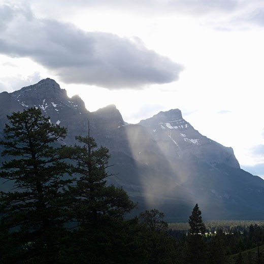 Stock Photo: 1910-1052 Mt Rundle - in Banff National Park - viewed from alpine meadow on other side of valley  Canada  Alberta