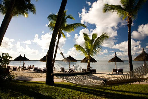 Idyllic Beach and Palm Trees near Le Prince Maurice Resort  Southeastern Mauritius  Africa : Stock Photo