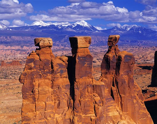 The Three Gossips  La Sal Mountains beyond  Arches National Park  Utah : Stock Photo