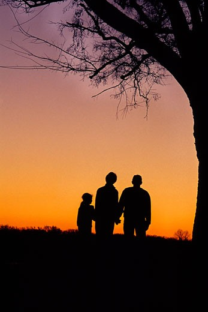 Stock Photo: 1913-1012 A family enjoys a sunset