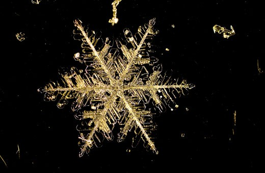 Stock Photo: 1920-1235 Individual snowflakes are difficult to photograph because they melt quickly unless it is extremely cold Their delicate crystal shapes usually form a hexagon pattern and no two snowflakes are ever identical or alike