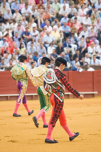Bullfighters perform the paseillo or inital parade Taken during a bullfight at the Real Maestranza bullring  Seville  Spain  on 15 June 2006 : Stock Photo