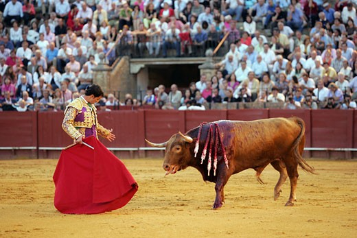 Luis Vilches  Spanish bullfighter Taken during a bullfight at the Real Maestranza bullring  Seville  Spain  on 15 June 2006 : Stock Photo